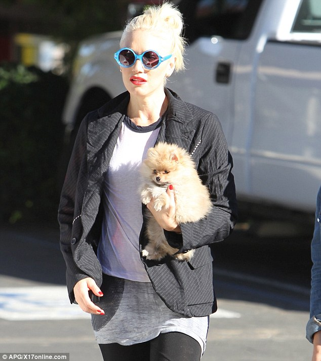 Pooch pal: Gwen Stefani was spotted with an adorable little puppy in Hollywood on Wednesday