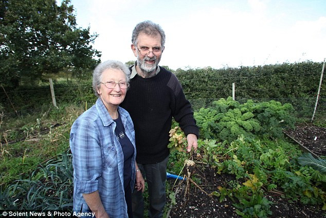 The real Good Life: Dan and Jane Fish have spent thousands of pounds renovating their bungalow in a bid to achieve the ultimate 'carbon-neutral' green lifestyle