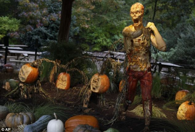 Grim on the inside: The zombie pumpkins' skin peels off to reveal pale, bony bodies