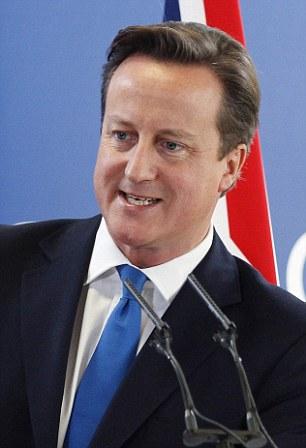 David Cameron at last week's EU leaders summit in Brussels