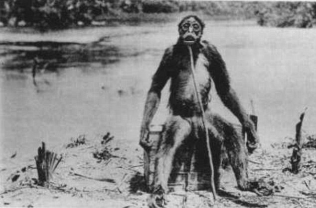 The 1920 picture that shows De Loy's Ape - reportedly of an unusual monkey that stood upright and became aggressive to Swiss geologist Francois De Loys