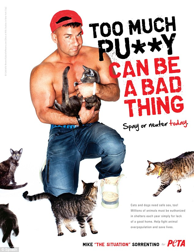 Let's here it for the boys! Jersey Shore's Mike 'The Situation' Sorrentino spoke up about the plight of abandoned cats