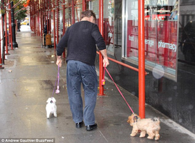 Drenched: As he made his way back to his New York abode with the pooches, the actor was seen looking drenched, his trousers soaked through