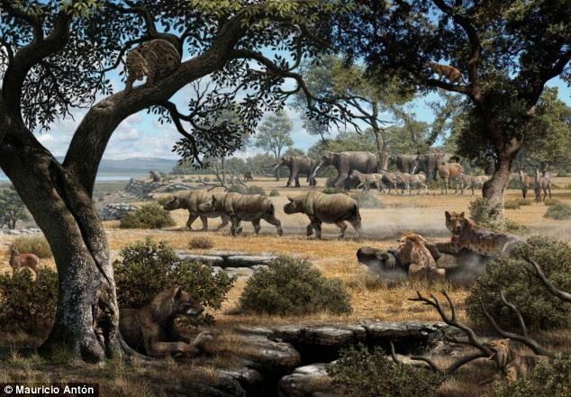 This illustration depicts how the region of Cerro de los Batallones in central Spain likely looked 9 million years ago. Researchers used carbon to shed light on how saber-toothed cats and bear dogs shared space and prey during the late Miocene period