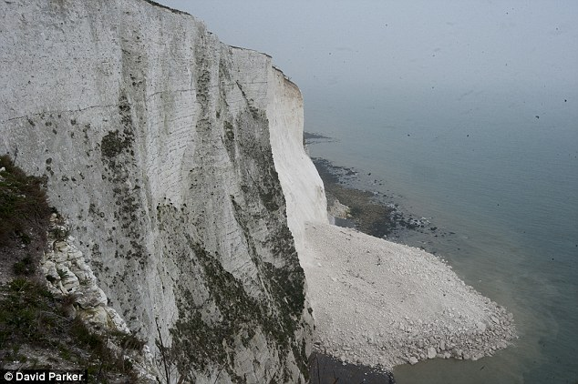 Precious landmark: A large chunk of the cliffs fell into the sea in March, highlighting how fragile they are in the face of coastal erosion