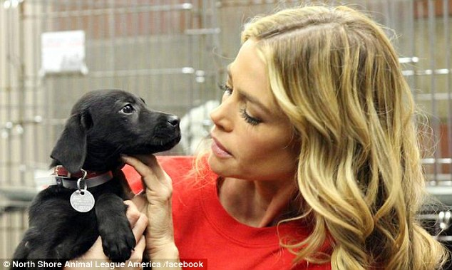 Lucky pup: Denise Richards has been helping promote awareness of animals in shelters that need homes - especially in the wake of Hurricane Sandy - and she gave this gorgeous dog, Tara, a home herself