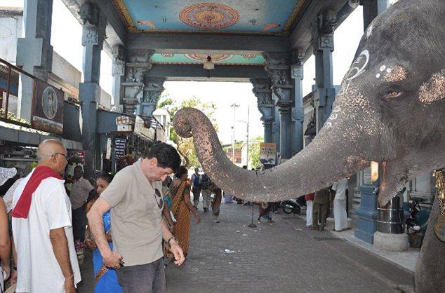 Elephant blesses Jon Sopel