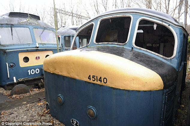 Mel and his uncle bought the four engines following the break-up of British Rail, with the plan to open the garden as a small museum