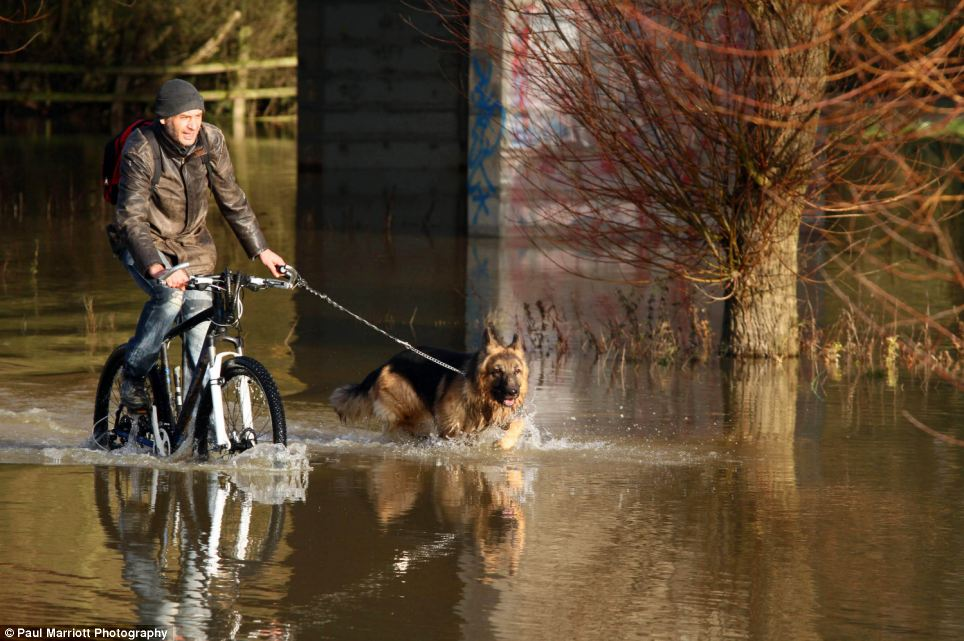 A cyclist rides through river water with his dog by his side on a lead after the River Nene at Peterborough, Cambridgeshire, burst its banks