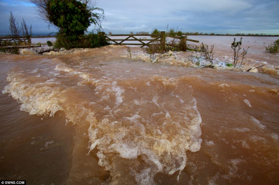 Downpours: A road completely submerged near East Lyng, Somerset last month