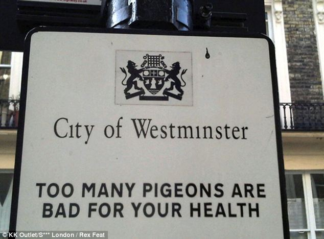 All of a flutter: Another hilarious snap which was sent in to the blog captured this stark warning about one of London's most populous residents