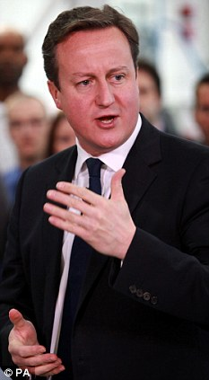 Mess: Prime Minister David Cameron has been criticised for his proposals on gay marriage.