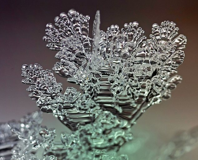 Frozen in time: These spell-binding pictures look like painstakingly carved ice art that even the most experienced ice sculptors would be proud of