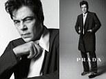 Benicio del Toro, Aaron Taylor-Johnson, Harvey Keitel, Eva Herzigova and Amber Valetta Prada unveils starry 2013 spring-summer campaign featuring A-list actors and supermodels