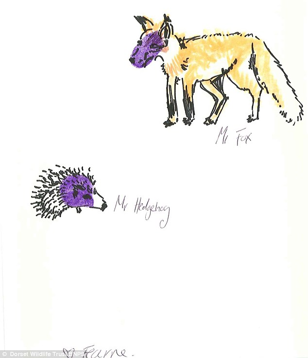 Sketch: This is Fearne Cotton's picture of a fox and hedgehog