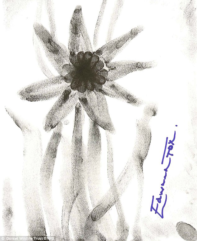 Dark: The celebrities were asked to make a sketch of an animal or plant of Britain, and start the work off by using their fingerprint. This shows Edward Fox's effort