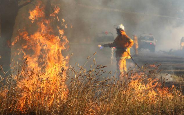 Rural Fire Service (RFS) firefighters tackle a grass fire