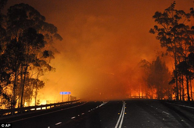Burning up: In this photo provided by the New South Wales Rural Fire Service, a wildfire near Deans Gap, Australia, crosses the Princes Highway