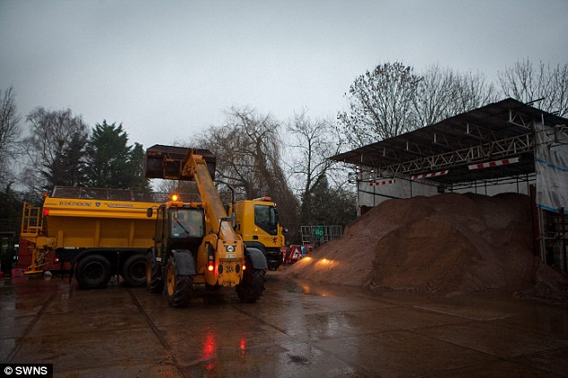 Getting ready: Crews load up gritting lorries ready to spread salt on the roads in Taunton, Somerset