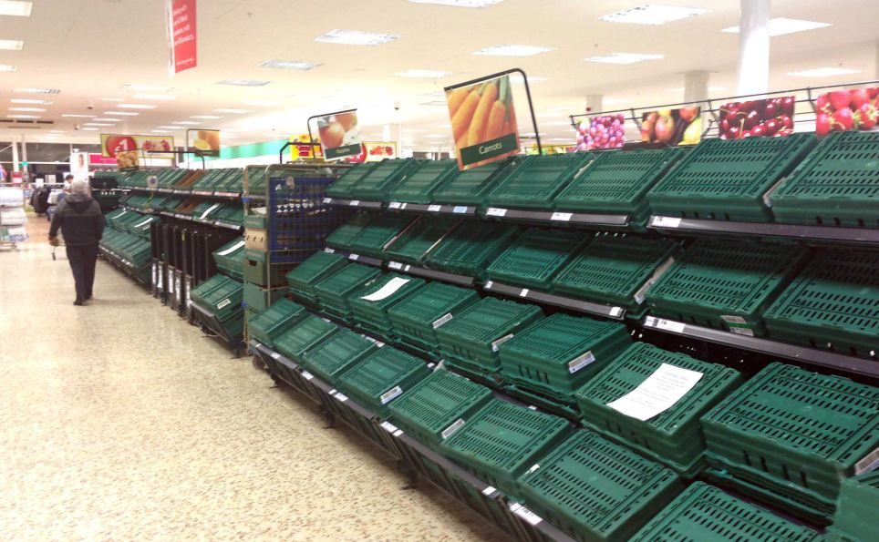 Shop 'til you drop: Empty shelves completely cleared of bread, milk and vegetables at a Tesco in Cardiff, after a rare red snow alert for Wales led to panic buying