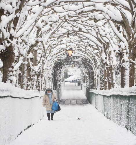 Tunnel vision: A woman makes her way carefully along a snow laden path in Bristol, where up to 15cm of snow fell