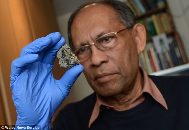 Claims: Professor Chandra Wickramasinghe with the fragment of space rock
