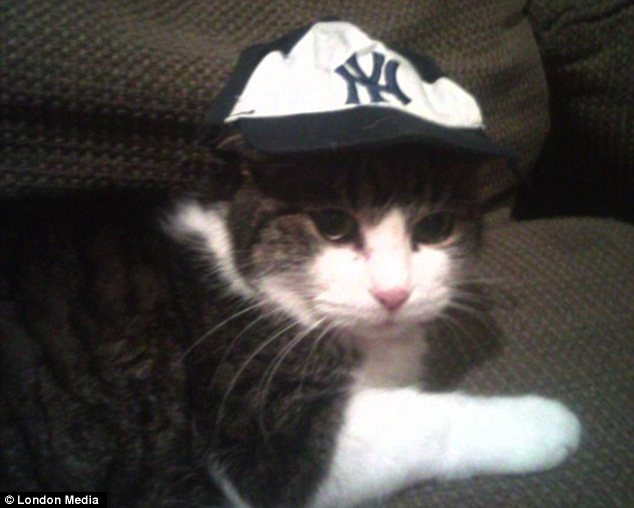 Sporty: This outgoing chap is a huge fan of the New York Yankees, as shown by his headgear