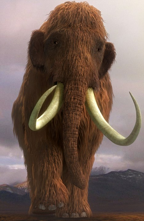 Major tusk: Recovering their DNA