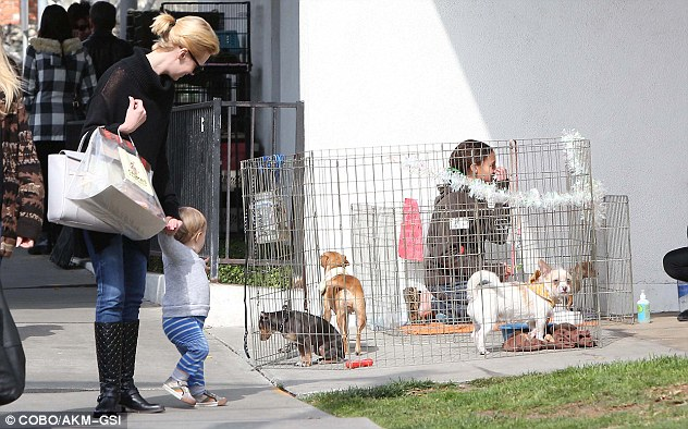 Can I have one? The blonde actress had to gently pull her son along after he stopped to look at some small dogs in a cage