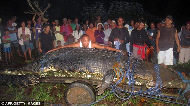Prize catch: Villagers pose with newly-captured beast. it was hunted after a spate of attacks on humans and livestock, officials said