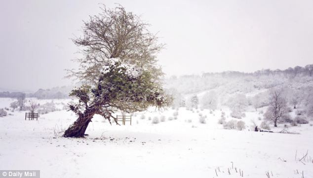 Cold: Snowy scenes like this one from Tring in Hertfordshire earlier this month could make a return