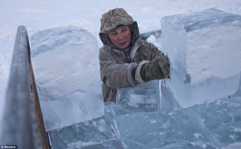 Icy load: Ruslan, 35, loads blocks of ice onto a truck outside Yakutsk in the valley where nothing grows so people eat reindeer and horsemeat
