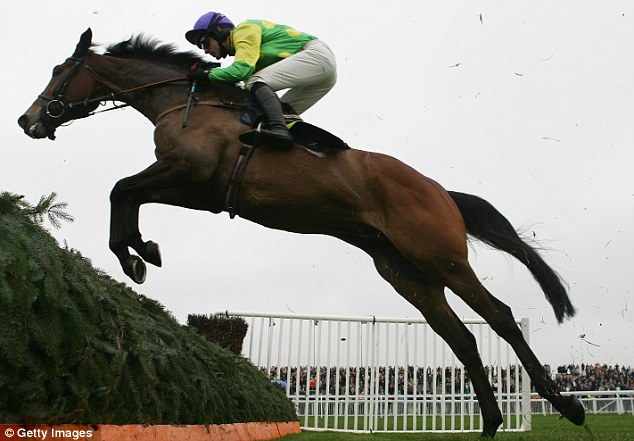 Dressed to kill: Another Nicholls trained horse, Kauto Star, has recently taken up a career in dressage