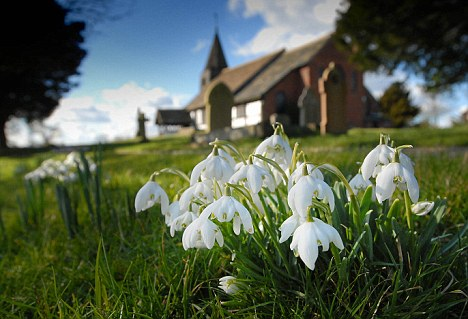 Springtime: It is possible to follow spring as it unfolds through the length of the country
