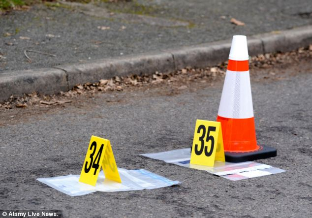 Suspect: Police were treating the incident as a suspicious and neighbours spoke of forensic investigators marking out a trail along the pathway from the house to a nearby car