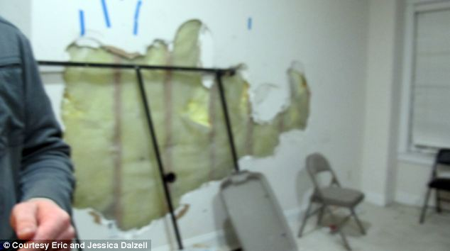 Throughout the property are walls have have had large sections removed by someone's fist or blunt instruments