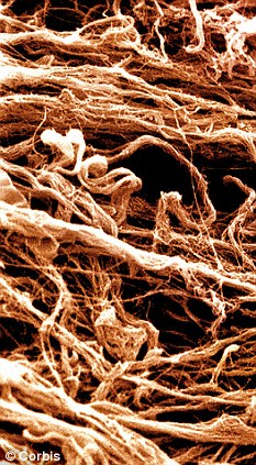 Collagen (pictured) is a protein that gives skin its strength and elasticity