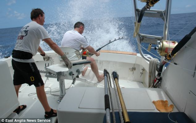 Kevin Gardner said he battled the giant blue marlin for three hours before finally landing it