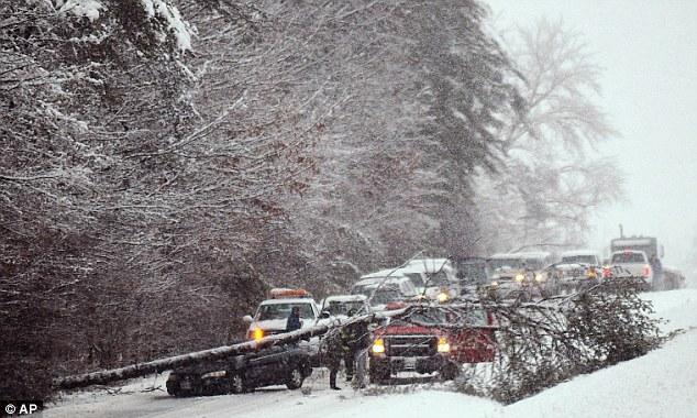 Crash: A tree lies across westbound Route 3 in the Chancellorsville Battlefield area of Spotsylvania, Va. on Wednesday