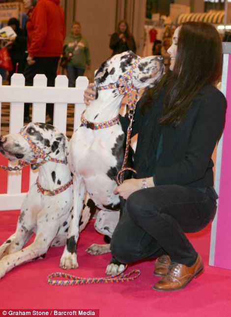 Star guest: Olympic medal winning cyclist Victoria Pendleton was manning the Eukanuba stand inside the NEC