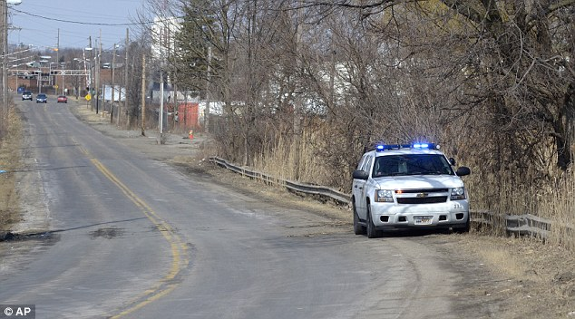 Scene of the accident: An Ohio State Patrol vehicle sits along Pine Avenue S.E. in Warren, Ohio, where the vehicle the teenagers were traveling in went off the roadway and into a pond