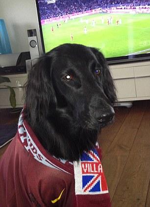 No 1 fan: Aston Villa supporter Luna