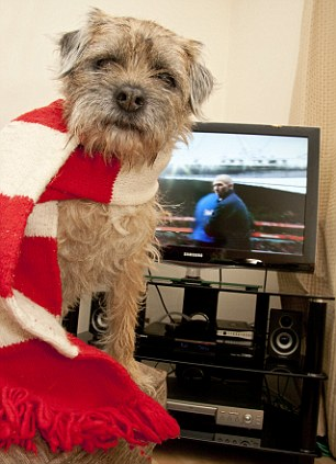 Good to be a Gooner: Arsenal supporter Ginny