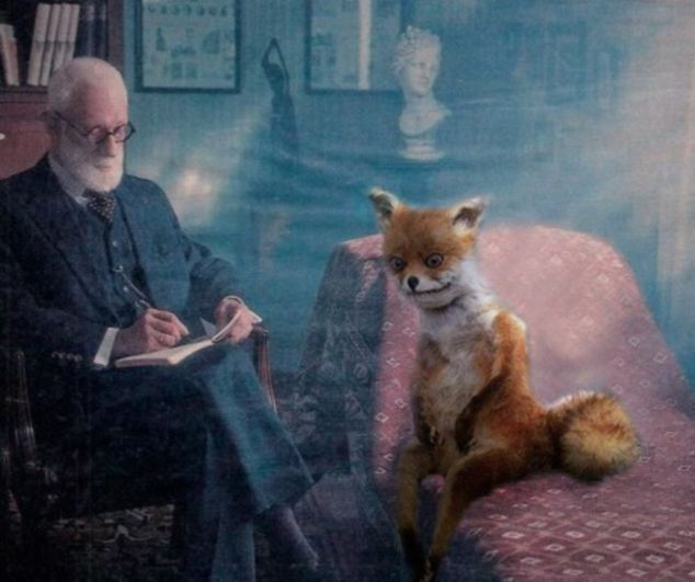 The talking cure: Stoned Fox gets psychoanalysed