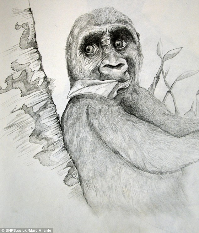 Detailed: The teenage artist's talent for sketching wildlife can be seen in this image created when he was 16