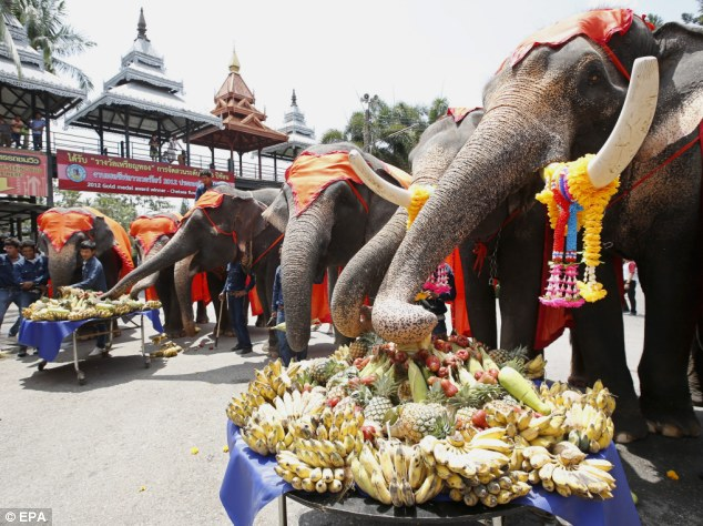 Fruity honours: National Elephant Day falls on the 13th March every year and is sees the popular animal honured in events across Thailand