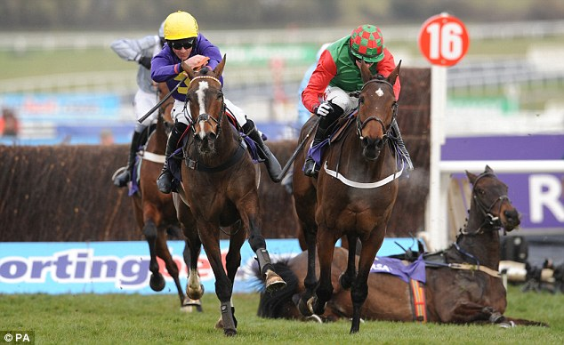 Fight to the finish: Lord Windermere (left) came home ahead of the rest after Boston Bob fell at the last