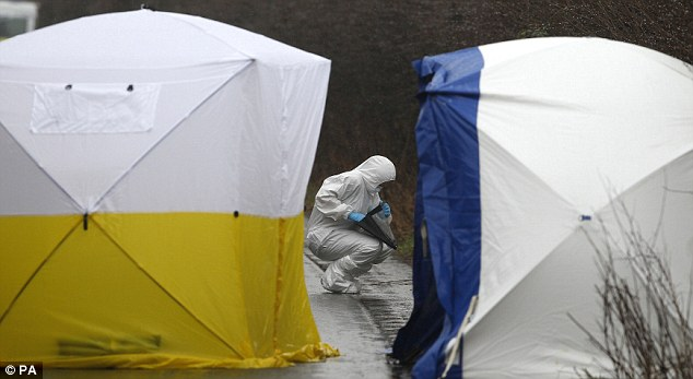 Discovery: Forensic officers set up tents to search for evidence