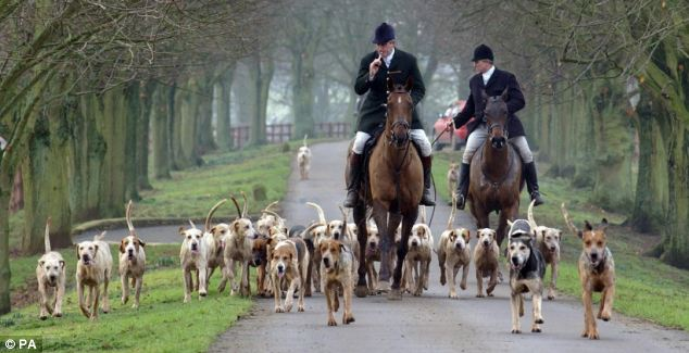 The League Against Cruel Sports is targeting people hunting illegally, hare coursing, badger baiting and other wildlife crimes (file photo)