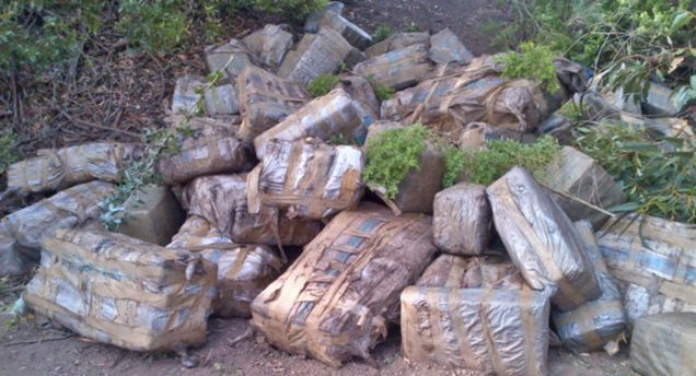 The stash of marijuana worth $4million found lying on a beach next to a boat in California